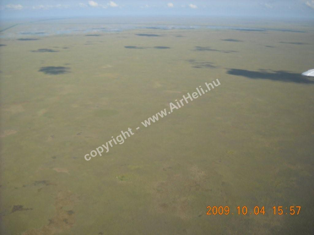 2009. október - Florida: Everglades